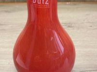 DUTZ Collection Glasvase Bistro Light Red 16 x 11 cm